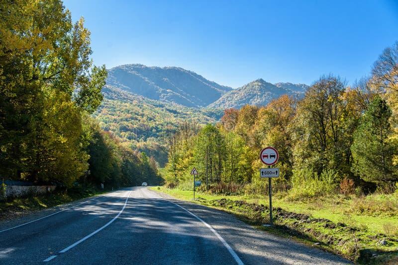 沥青山路美丽的景色在秋天 库存照片