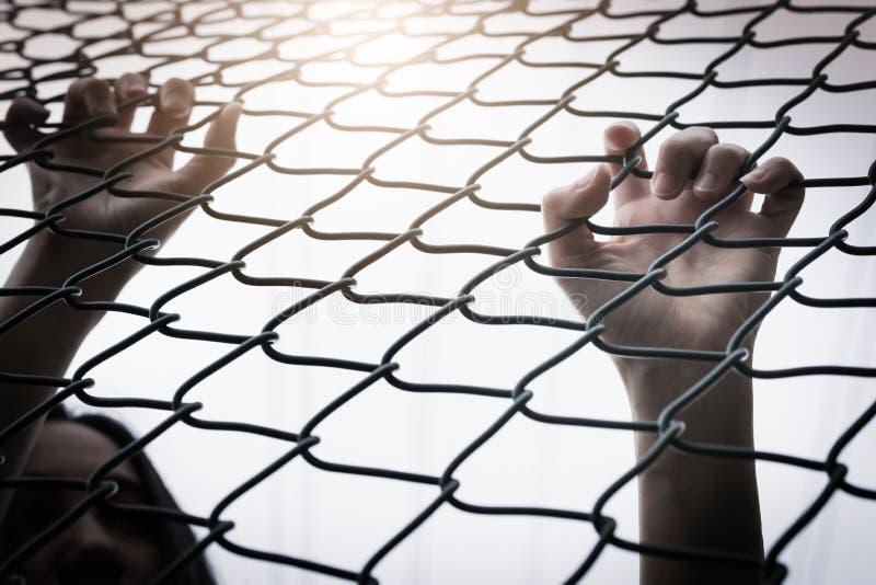 沮丧,麻烦和解答 在链子链接篱芭的绝望的妇女手 库存照片