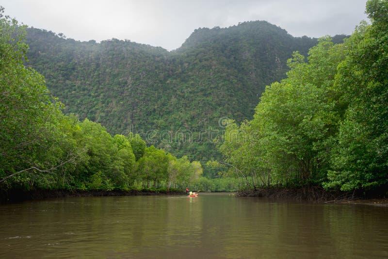 河、山和美洲红树与红色皮船的森林视图 库存图片
