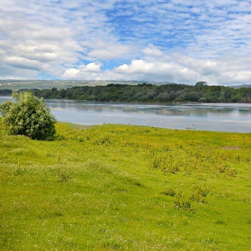 河、草甸和洪泛区森林 免版税库存图片