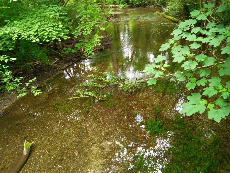 河体贴流动 库存照片