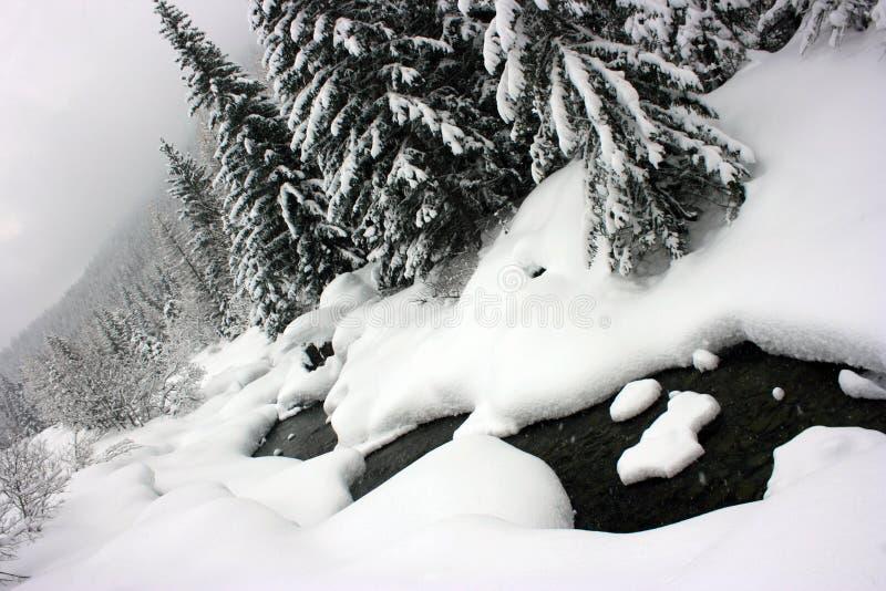河冬天 免版税图库摄影