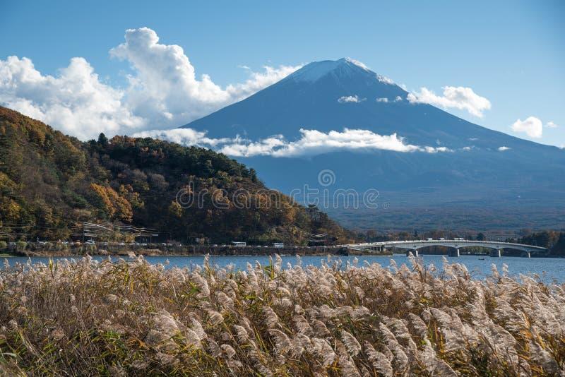 河口湖的,日本富士山 免版税库存图片