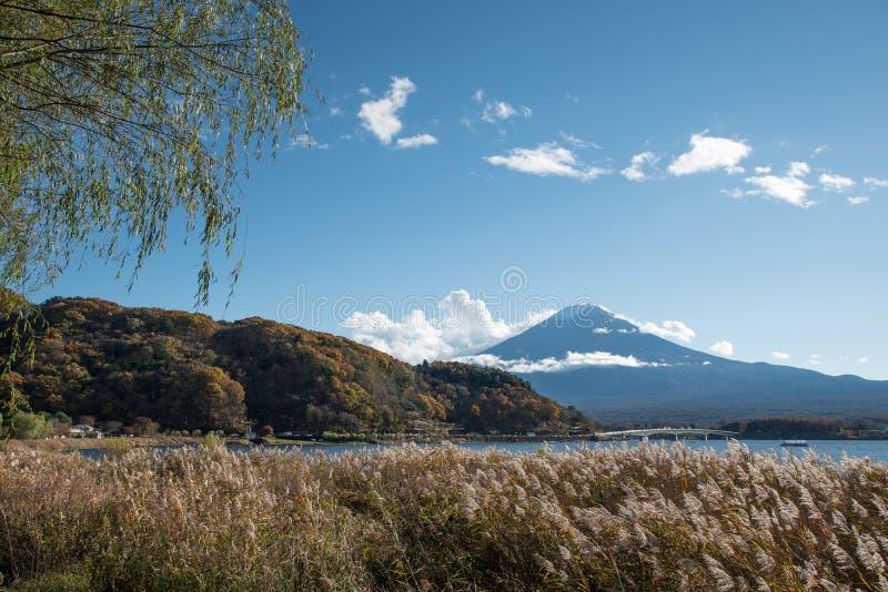 河口湖的,日本富士山 库存照片