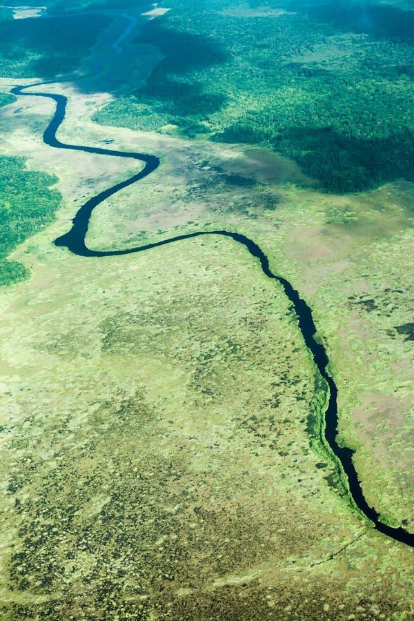 河和密林的概略的观点,采取从飞机 免版税库存照片