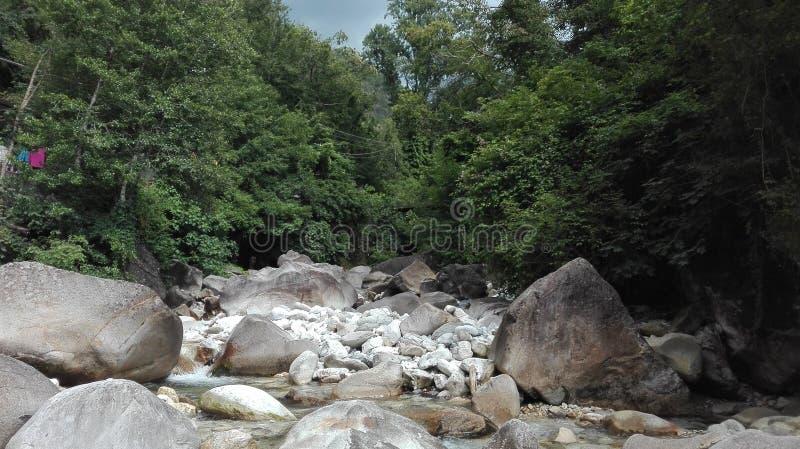 河和岩石在森林中间 免版税库存照片