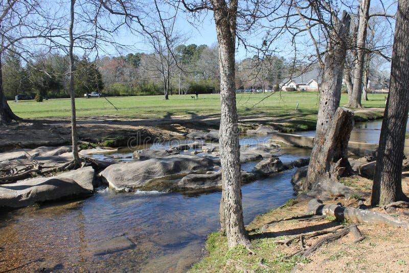 河和晴天在公园 免版税库存图片