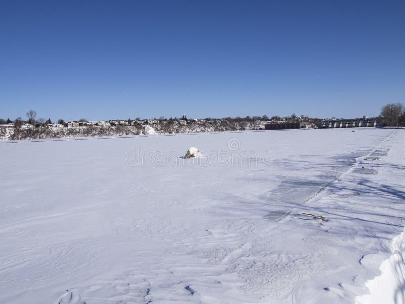 冻河和树在冬天在公园 库存照片