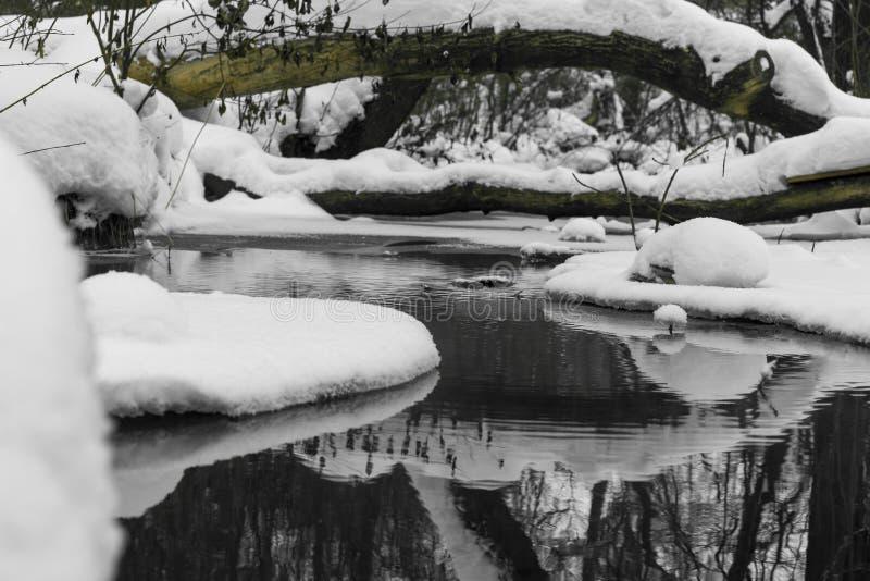 河在与白雪流动的冬天 库存图片