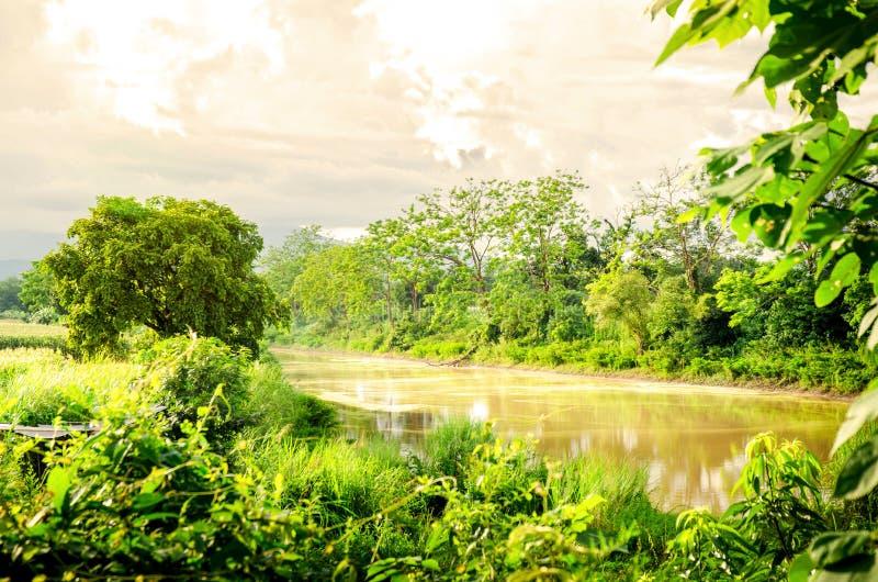 河在地方城市和森林 库存图片