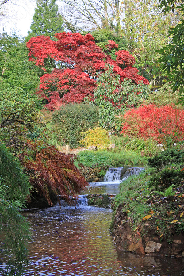 河在庭院里 库存照片