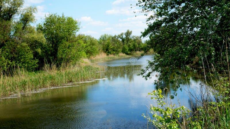 河在有树的一个村庄在岸 库存照片