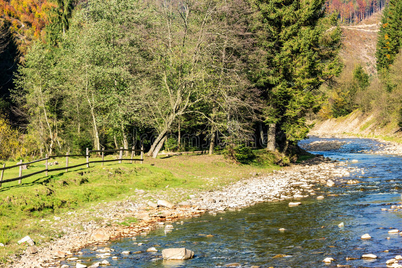 河在秋天山森林里 库存图片