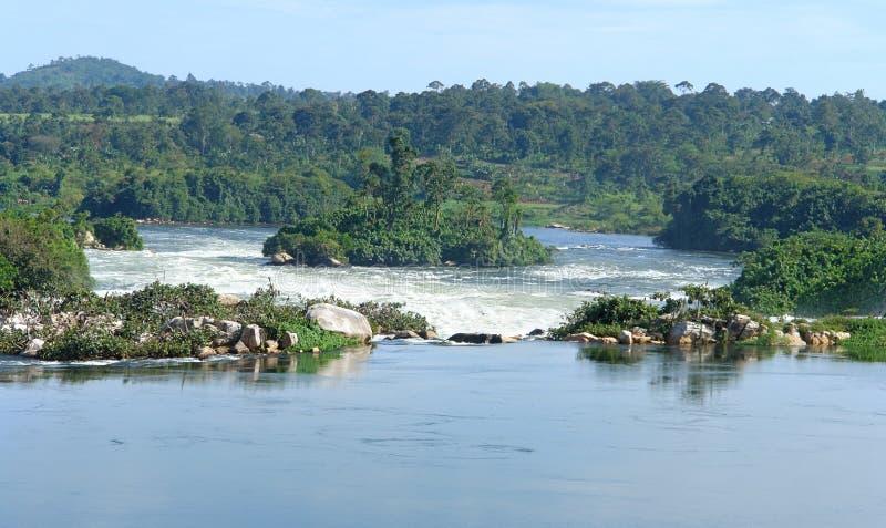 河在Jinja附近的尼罗风景在非洲 免版税库存照片