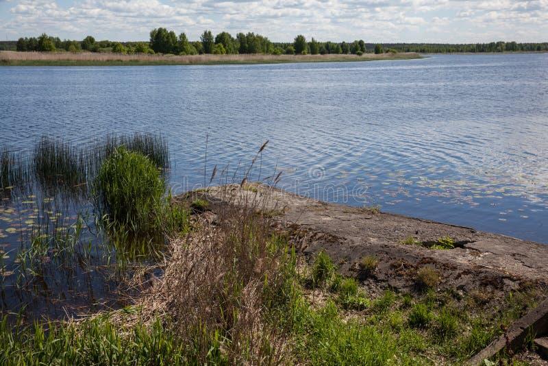 河在Jurmala 库存图片