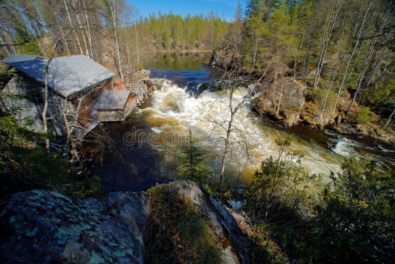 河在Oulanka国家公园,芬兰 旅行在欧洲北部的Summmer  在河水附近的木房子 瀑布在Oul 图库摄影