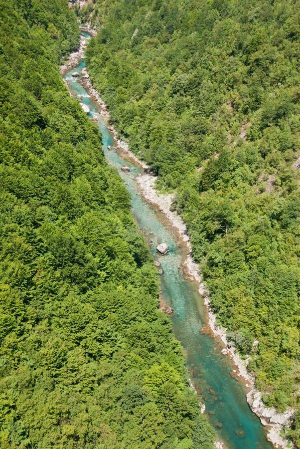 Download 河塔拉峡谷 库存照片. 图片 包括有 montenegro, 猪草, 本质, 峡谷, 横向, 巴尔干, 塔拉 - 30328476