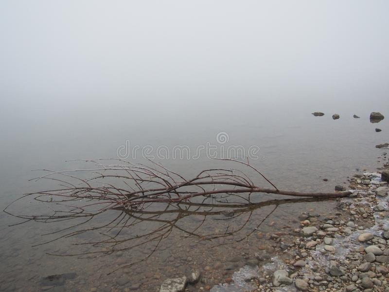 河多瑙河在冬天 免版税库存照片