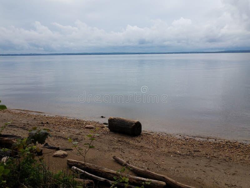 河岸,岩石、沙子、木材和贝壳 免版税库存图片