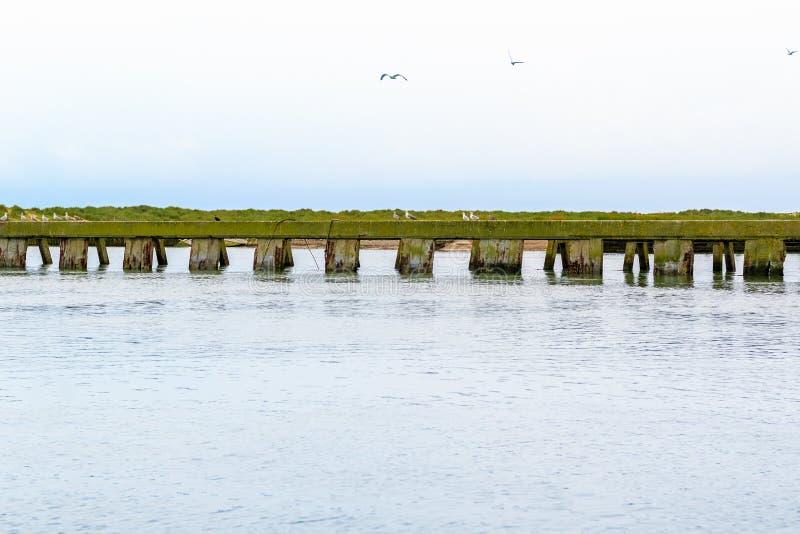 河布莱斯和Dunwich河的连接点在索思沃尔德,萨福克 库存照片