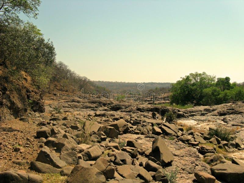 河床干燥河 免版税库存照片