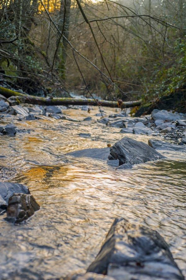 河是一条自然流动的河道 库存图片