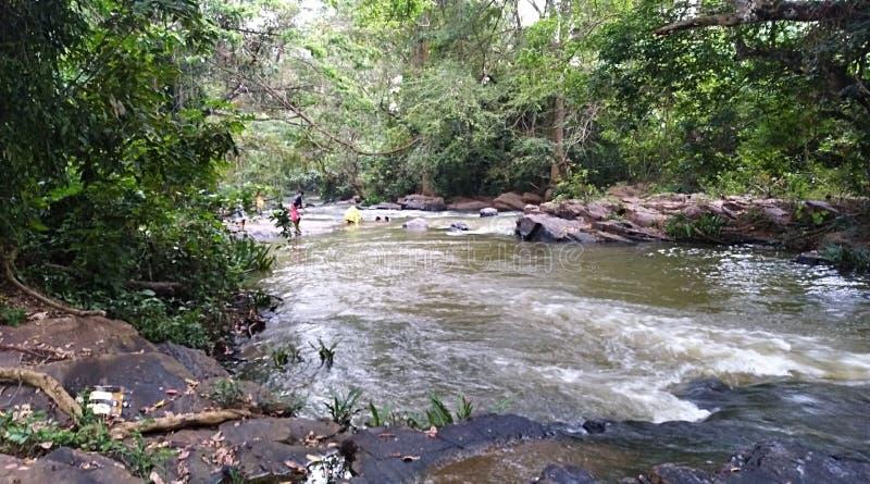 河水流量美丽的景色  免版税库存图片
