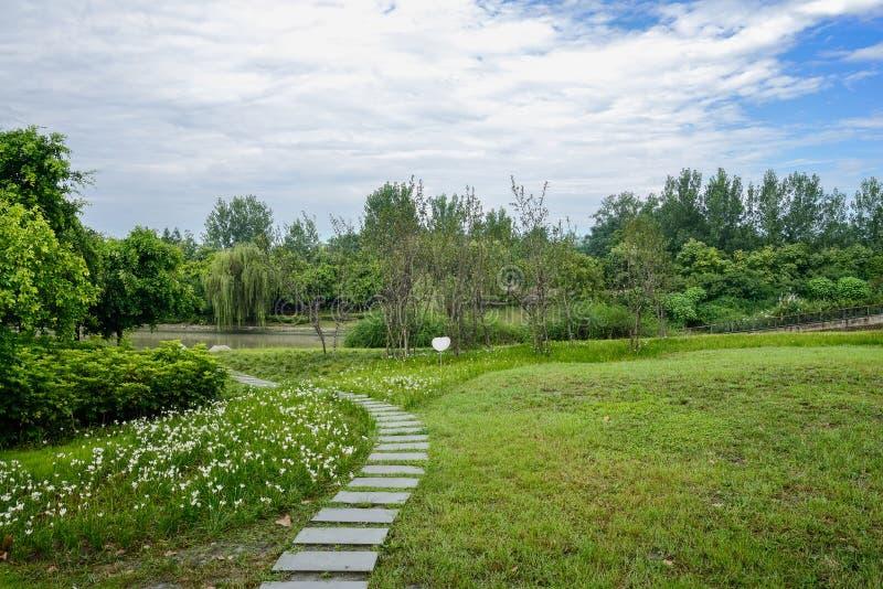 河沿在多云夏天m草和花的石板道路  库存照片