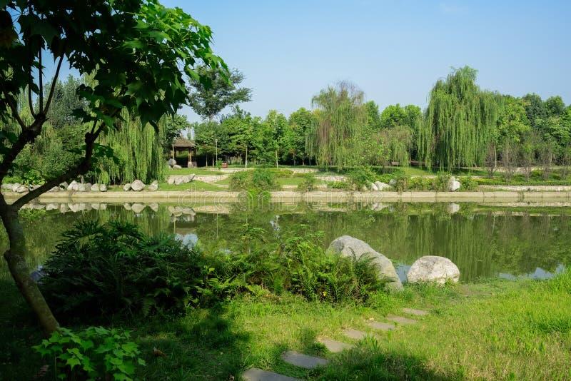 河沿在草的石板道路和一点点在晴朗的夏日 库存照片