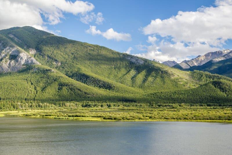 河的亚伯大加拿大Scinery视图在绿色山附近的 图库摄影