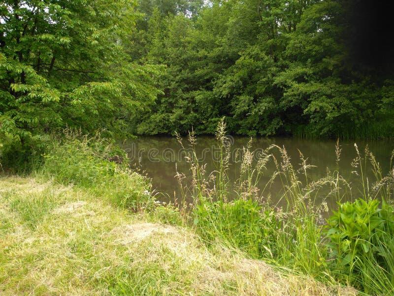 河的宜人的引伸 库存图片