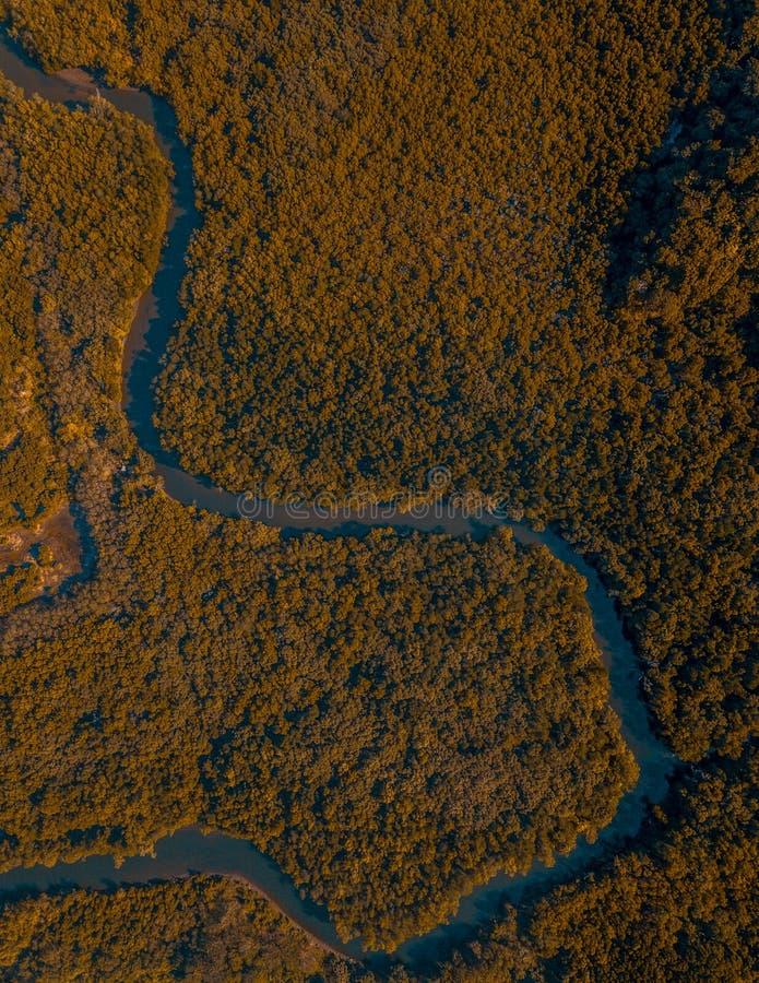 河的寄生虫视图 免版税库存图片