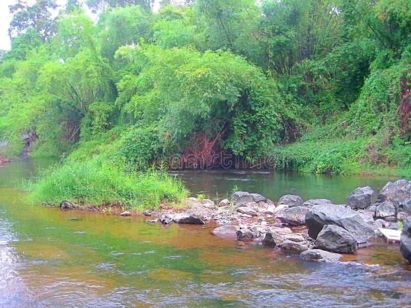 河的岩石海岸在泰国 库存照片