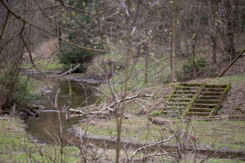 河的来源 库存图片