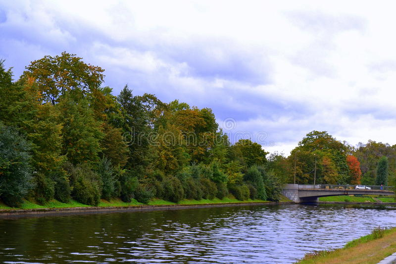 河的河岸 库存照片