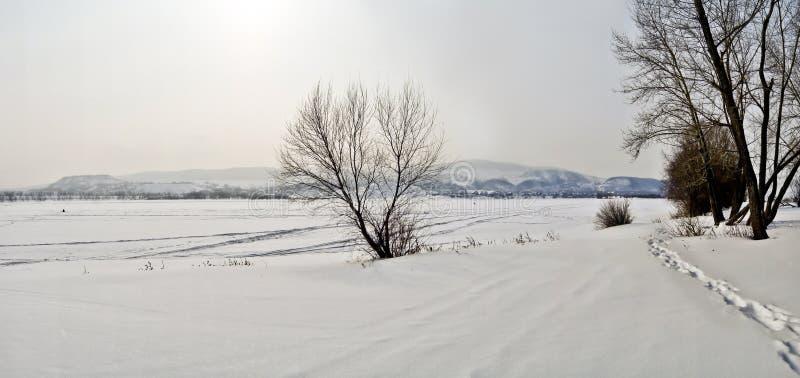 冻河的海岸。 免版税图库摄影