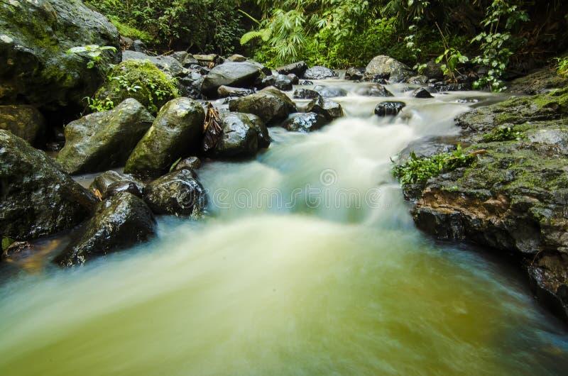 河的风景有岩石的在密林 库存照片