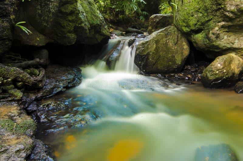 河的风景有岩石的在密林 免版税图库摄影
