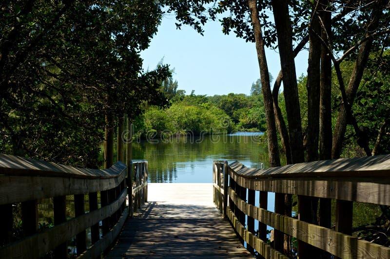 河看法从木板走道码头的 免版税库存照片