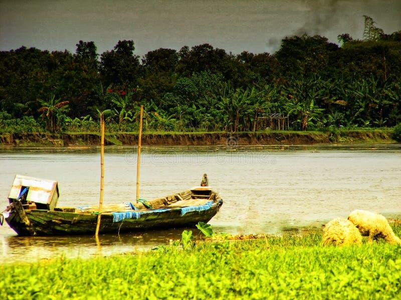 河船 库存图片