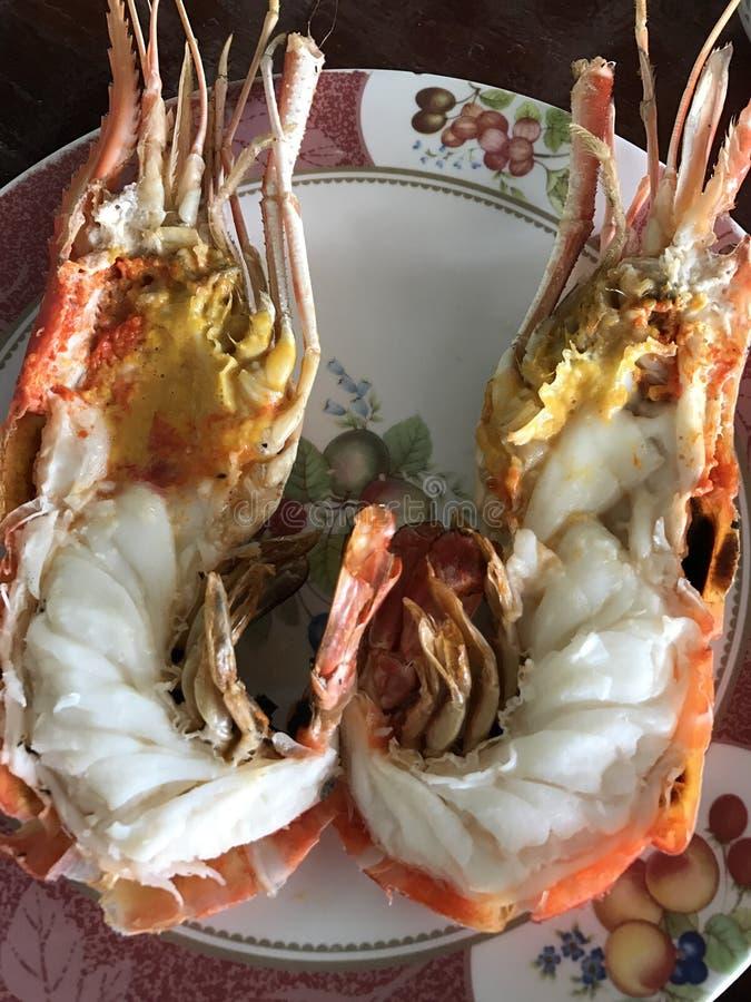 河虾 免版税库存照片