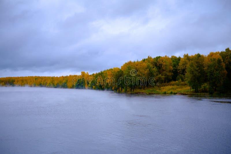 河通过秋天森林 免版税图库摄影