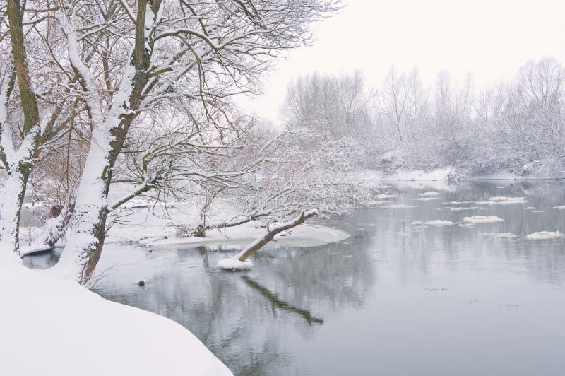 河降雪的冬天 库存图片