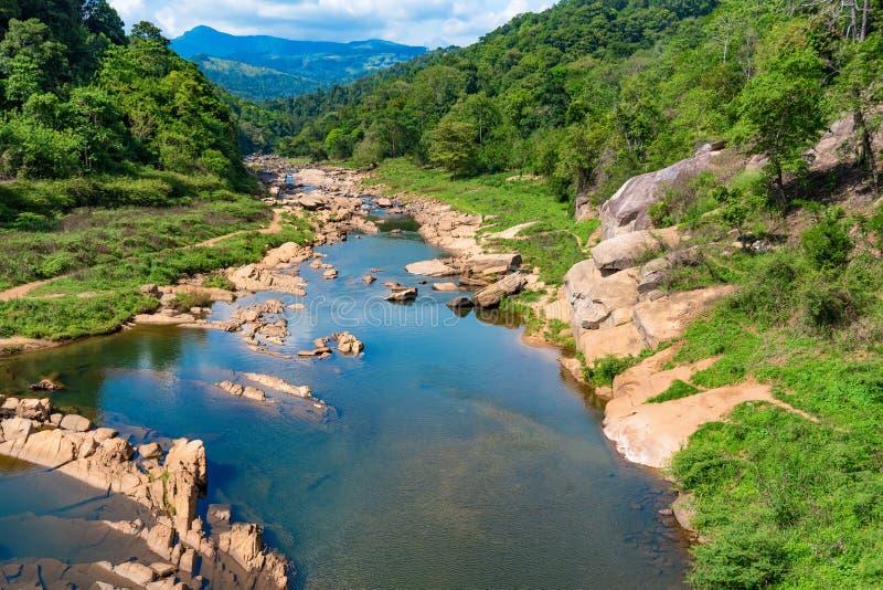 河风景在斯里兰卡的密林 库存图片