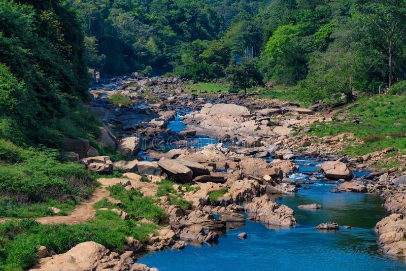 河风景在斯里兰卡的密林 免版税库存照片