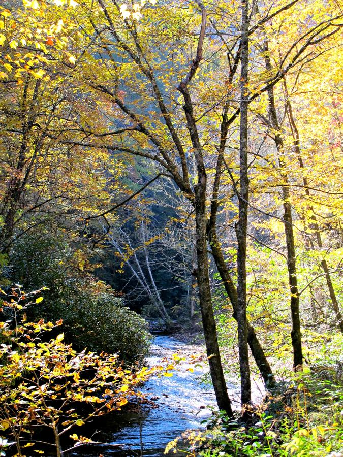 河绕通过在秋天的山 库存照片