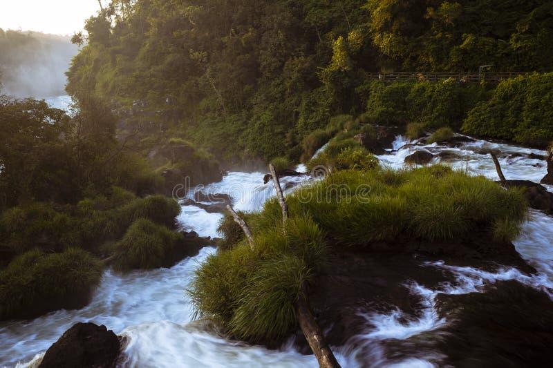 河iguacu的流程 免版税库存图片