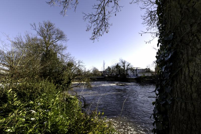 河Leam在冬天-泵房/杰夫森庭院,皇家Leamington温泉 免版税图库摄影