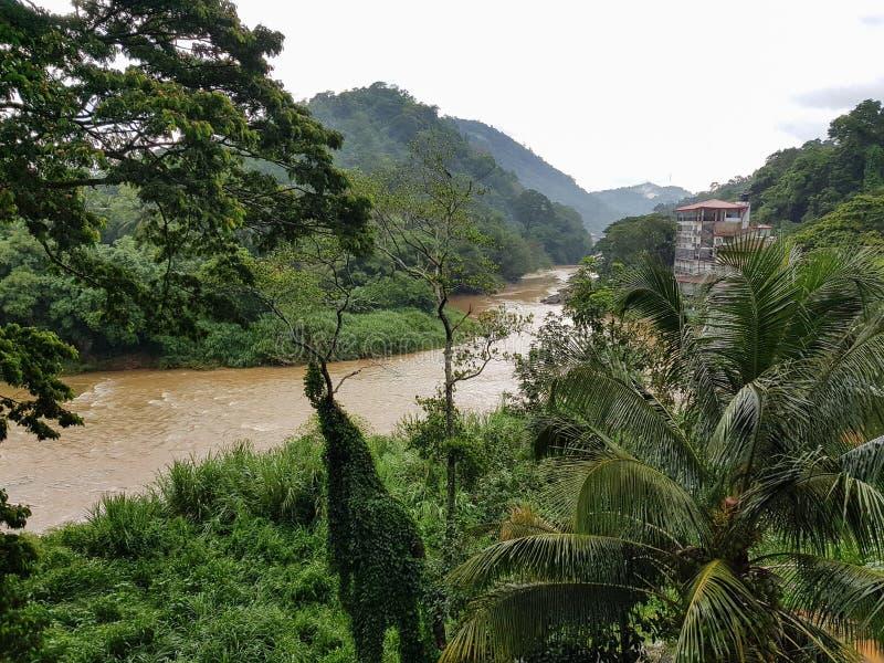 河Mahaweli甘加的看法在康提在雨中 免版税库存照片