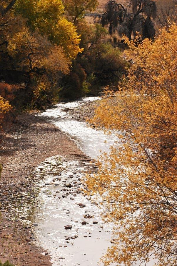 河sparkleing的星期日 免版税库存图片